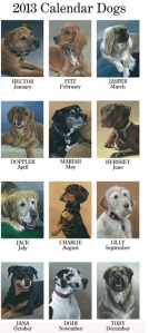 הכלבים שנבחרו לייצג את חודשי שנת 2013