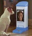 חדש - שיחות ווידאו עם הכלב
