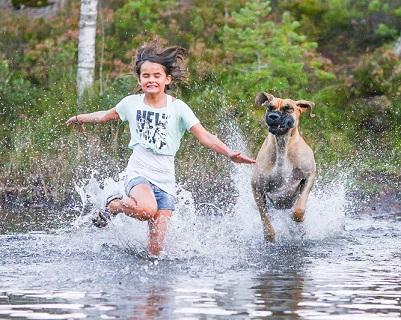 המנצחים בתחרות צילום הכלבים השנתית 01