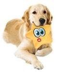 צעצוע אולטרה-סוני לכלב