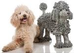 פסל של כלב - נירית לבב