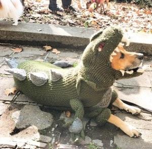 תחפושת לכלב - דרקון