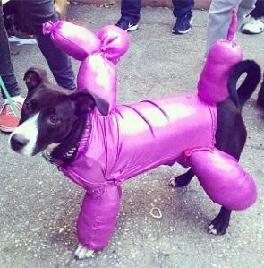תחפושת לכלב - כלב מבלון